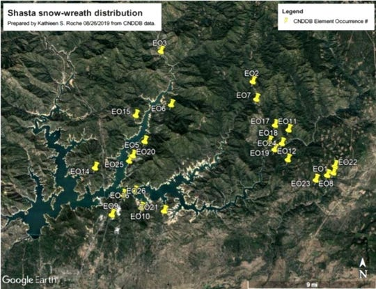 This map, included in a California Department of Fish and Wildlife report on the Shasta snow-wreath, shows where the plant grows around Lake Shasta.