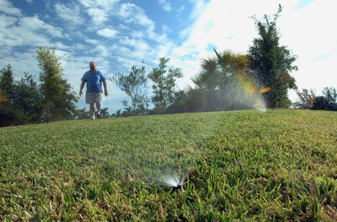 Proper irrigation management is critical to a healthy lawn.