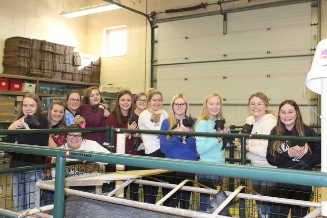 Members of Tari Costello's Large Animal Science class, from left, Brooke Schultz, Hannah Loomans, Selena Garibo (kneeling), Jennifer Schatz, Norah Ganske, Brianna Asmus, Vanessa Witthun, Mikayla Bruene, Mackenzie Rahn, Serena Freriks, Makenna Kunz and Amber Duscheck, show off a litter of newborn pigs that were born in the classroom.