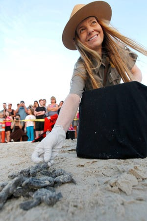 Donna Shaver, chief of the Division of Sea Turtle Science and Recovery, National Park Service, Padre Island National Seashore, has spearheaded the recovery of the Kemp's ridley sea turtles.