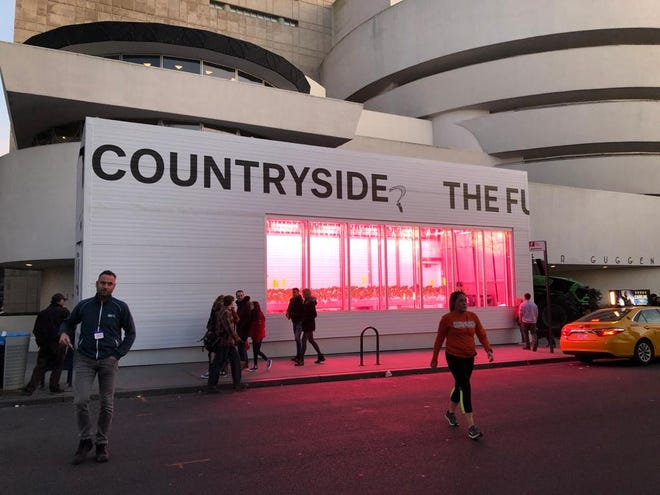 """""""Countryside, The Future,"""" is an exhibition at the Guggenheim Museum in which Infinite Acres and 80 Acres Farms are participating by growing the tomatoes in an indoor module."""