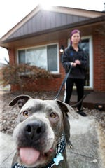 Emily Holbert's dog Vinsu has been labeled a danger by the United States Post Office and they will not deliver to her block on Gallant Fox Run Road.Feb. 19, 2020