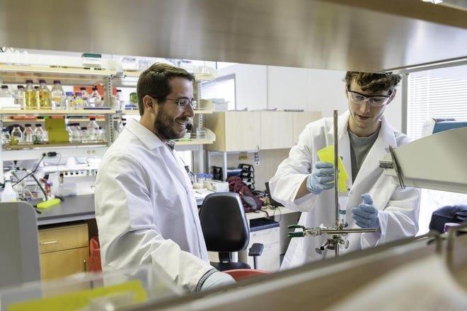 Jason S. McLellan, associate professor of molecular biosciences, left, and graduate student Daniel Wrapp, right, work at the University of Texas on Monday.