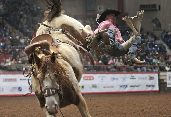 Creighton Curley competes in the saddle bronc event at the San Angelo Stock Show and Rodeo on Thursday, Jan. 30, 2020.