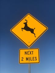 Signage south of Dell Rapids on Highway 115 alerts drivers of possible deer crossings.