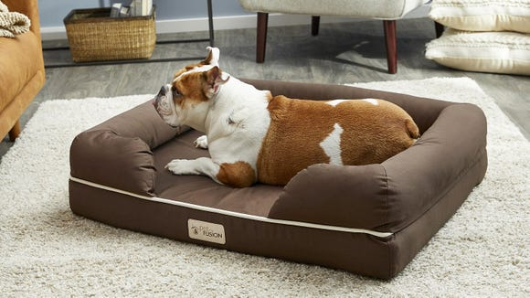 This memory foam dog bed is great for large dogs—and its on sale