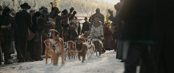 """Buck pulls a sled in """"The Call of the Wild."""""""