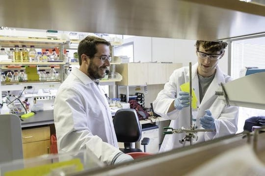 Jason S. McLellan, associate professor of molecular biosciences, left, and graduate student Daniel Wrapp, right, work at the University of Texas on Monday.