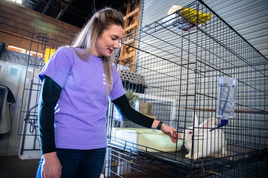 Katie Elliott, founder of Bunny Brigade SC, a rabbit rescue organization, with one of the 10 rabbits available for adoption at Izzie's Pond in Liberty, Friday, February 21, 2020.