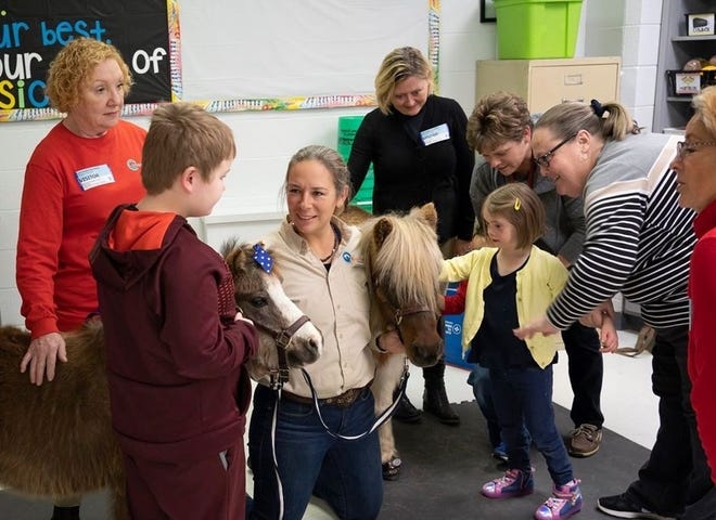 As part of Healing Reins equine-based local literacy programs, students are allowed to get up closed and personal with miniature horses Rocky and Tater Tot right in the classroom.