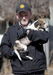 Ashland County Dog Warden Joe Eggerton carries of the six dogs that the owner surrendered at 242 W. Main Street Friday, Feb. 21, 2020.