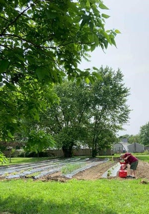 Work begins in the spring to prepare the Urban Gardens plot at the Mayes Temple location.