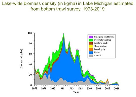 The biomass of prey fish in Lake Michigan in 2019 was third-lowest since 1973, according to a USGS bottom-trawl survey.