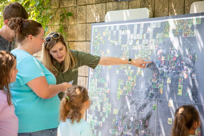 The intent of the Michigan Wildlife Photo Mosaics was to illustrate how people are necessary for wildlife management. More than 10,000 people crafted the mosaics at high-profile events throughout the state.