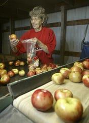 Honey Crisp apples for sale.