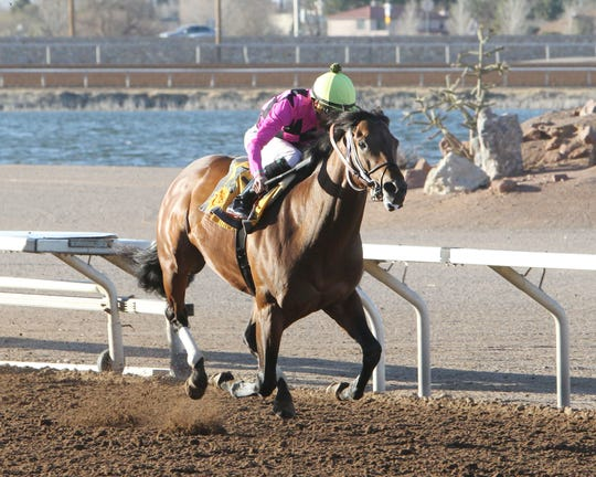 Sir Rick won the 1 and 1/16th miles Mine That Bird Derby on Sunday at Sunland Park Racetrack & Casino with local jockey Francisco Arrieta aboard.