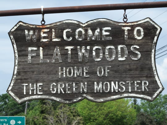 """""""There's a pattern in Theyst Virginia of seeing strange creatures in the woods,"""" O'Leary says of Flatwood."""