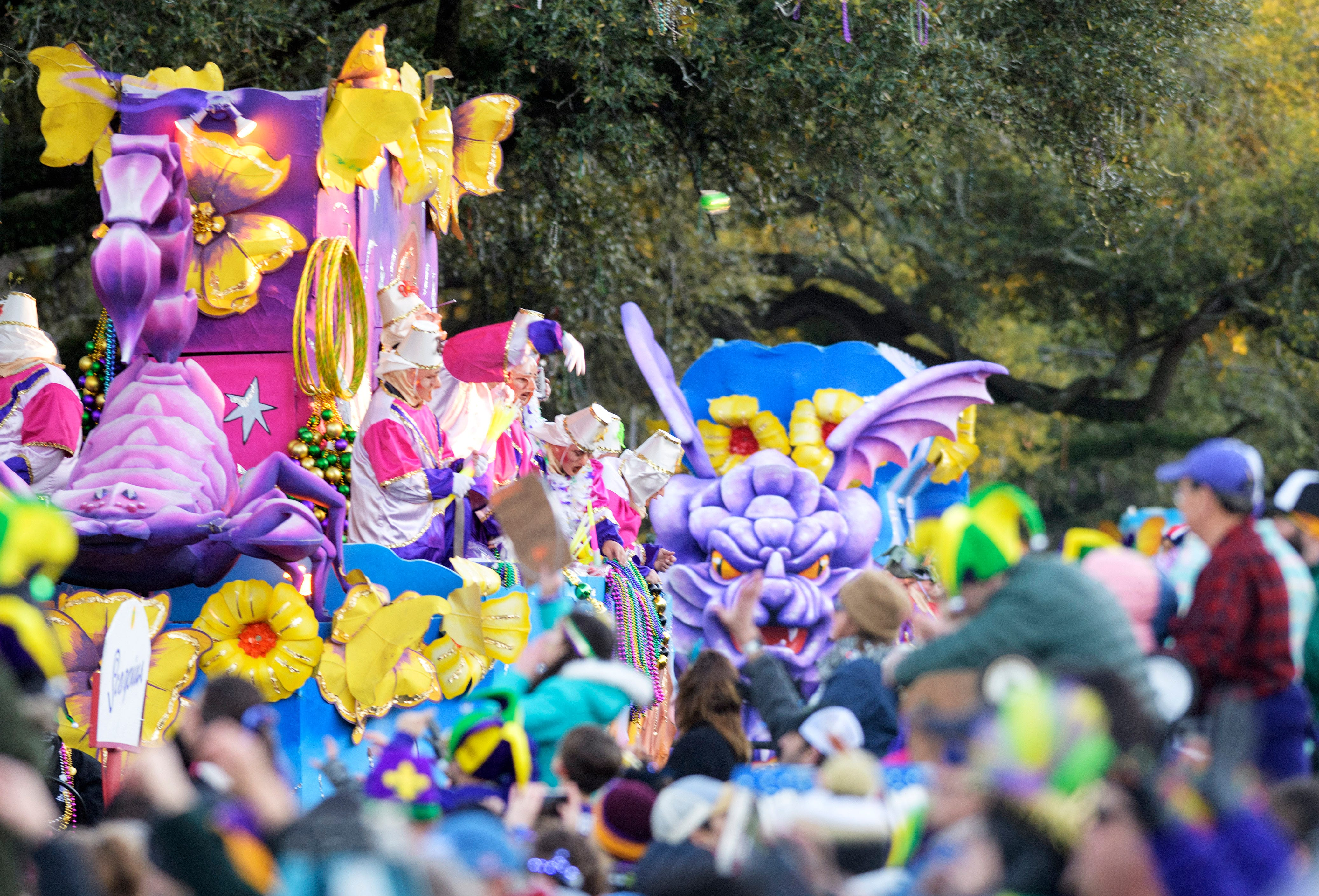 Mardi Gras photos: New Orleans alive with parades, costumes