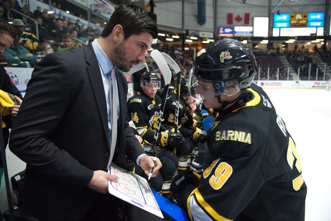 The Port Huron Yeti picked Sarnia Sting assistant coach Brad Staubitz in the sixth round of the National Roller Hockey League draft on Saturday.