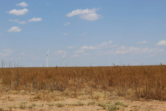 West Texas landowner responses showed they were 'not at all likely' to designate all or part of their land for wind or solar energy development, according to a new report from Texas A&M.