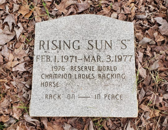 Rising Sun marker. She was 1976 Reserve World Champion Ladies Racking Horse