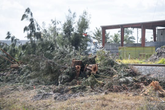 Despite concern from local residents, Treasure Coast cities and counties have no jurisdiction over the clearing and grubbing of vegetation near Florida East Coast railroad tracks, seen Tuesday, Feb. 25, 2020, in Martin County. The removal of vegetation to relocate fiber optics and utility lines are among the first steps in preparing the Treasure Coast for Virgin Trains USA, a high-speed rail system already traveling between West Palm Beach and Miami.