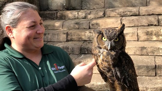 Luna, a Great Horned Owl, with her supervisor, Diana Costanzo, at Six Flags Great Adventure in Jackson.