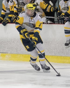 Andrew Larson had a goal and four assists for Hartland in a 9-1 victory over Fenton-Linden in the first round of the regional hockey playoffs.