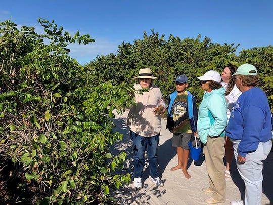 Judy Morgan describes plant species at the beach.
