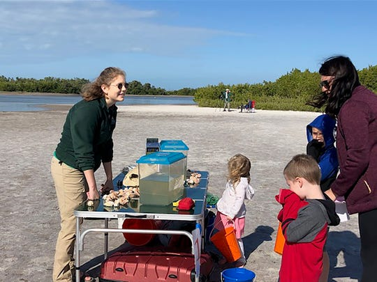 """Friends of Tigertail's """"Discover Tigertail"""" event held on Saturday, Feb. 23. Above: Alyssa Brunner from the Conservancy of Southwest Florida displays creatures netted in the lagoon."""