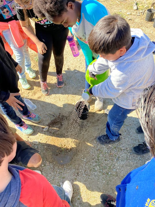A group of students carefully waters a newly planted native species.