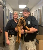 Special Victims Unit Sgt. Sonya Bush and Investigator Paul Osborn hold the Tallahassee Police Department's new bloodhound, Jon Jon.