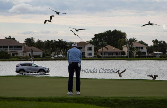 Hudson Swafford lines up a putt on the 18th hole as birds land on the green during the first round of the Honda Classic at PGA National in Palm Beach Gardens, Feb. 27, 2020.