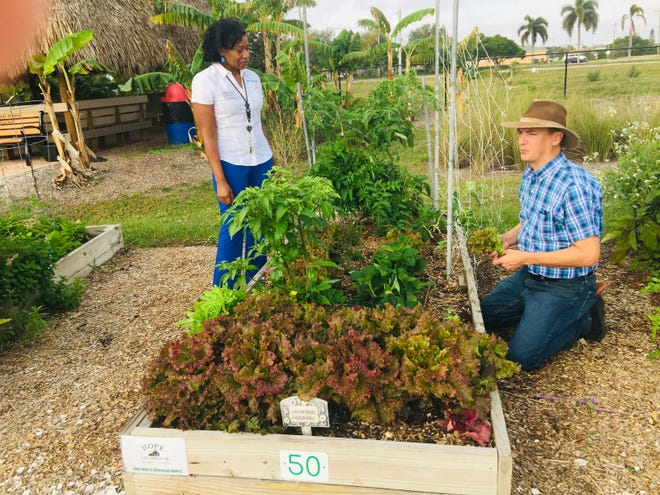 Janice Watson, with the UF/IFAS Extension Faculty, checks out one of the plots maintained by Hope Clubhouse and being tended by by Executive Director James Wineinger.