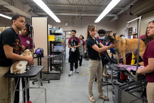 Megan Aiosa, Agriculture instructor, helps the students groom the dogs at Liberty Technology Magnet High School  in Jackson, Tenn., Thursday, Feb. 20, 2020.