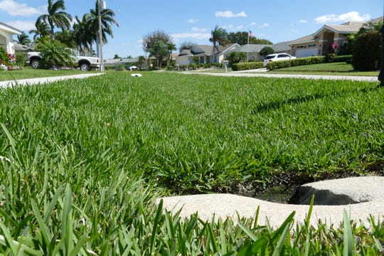 A swale is covered with grass on N. Bahama Ave. in Marco Island on Feb. 28, 2020.