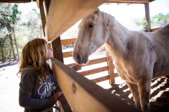 Kadynce Boutwell, 8, pets her horse, Shiner, at her home near Golden Gate Estates on Friday, February 28, 2020. The family owned four horses, one of which was butchered on Friday morning.