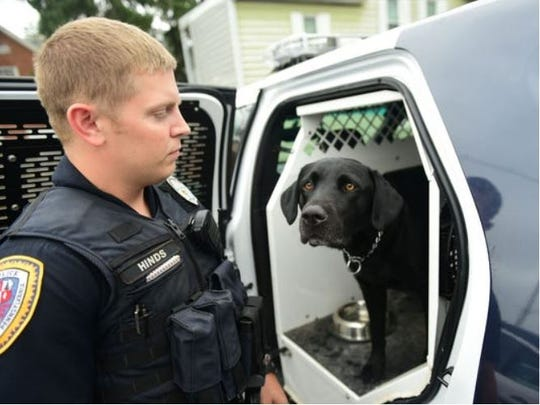"Chambersburg Borough Police Officer Patrick Hinds works with his K-9 partner Mattis. ""His ability to find these items not only allows us to get them off of the streets and out of the hands of addicts, but also keeps me and my partners safe by alerting us to the presence of these harmful drugs which could cause us untold harm just from contact,"" Hinds wrote in an email."