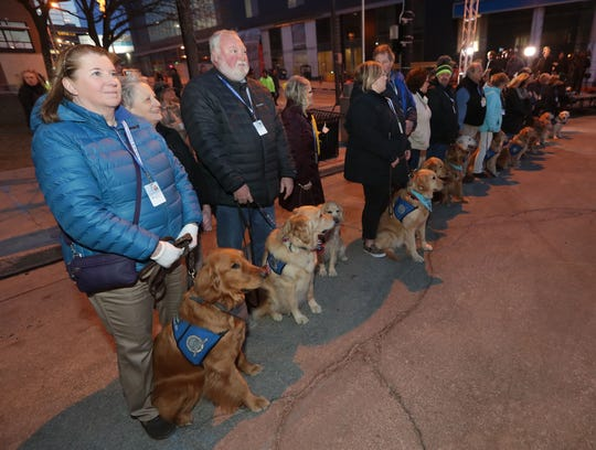 Lutheran Church Charities LCC comfort dogs are lined up before a vigil March 1 at Milwaukee City Hall to remember the victims of the Molson Coors shooting.