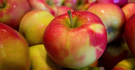 InCider Inc. hopes to soon open a hard cider making operation in West Bend.