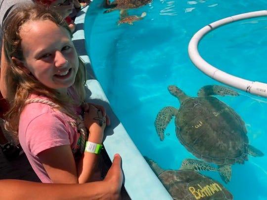 Ella Elkins visits a turtle hospital in Florida.