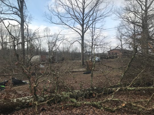 Trees lie in the backyards of multiple homes including Brancy Patton's on Ballard Road just north of Camden on Tuesday after a tornado passed through Monday night.