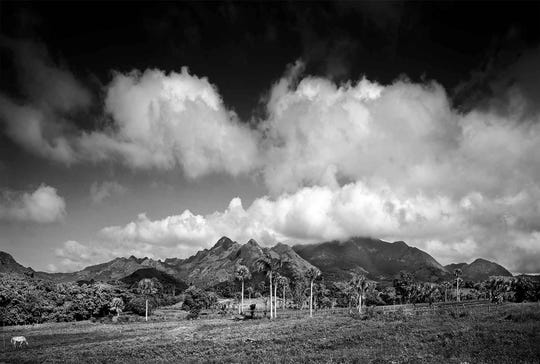 """The IMAG History & Science Center announces a new photography exhibit at the museum called """"Cuba: The Natural Beauty"""" by Clyde Butcher, award-winning photographer, conservationist, and humanitarian."""