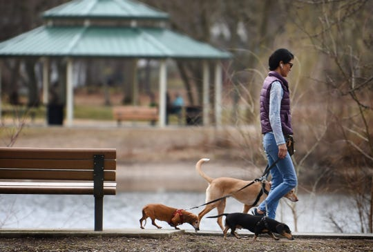 A visitor takes a walk with three dogs along the pond at Saddle River County Park in Glen Rock on 03/02/20.