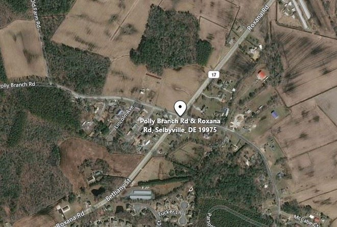 Delaware State Police is investigating a death in Selbyville after human remains were discovered Monday evening, according to a news release.