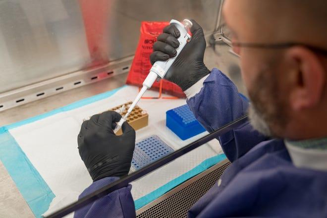 Coronavirus testing at New York State's Wadsworth Lab in Albany.