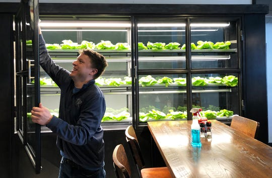 Hometown Roots owner Casey Todd cleans the glass of the doors of the new custom-built grow wall in the dining room of his restaurant, where he is growing Bibb lettuce that will be served to diners.