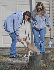 Agents from the Humane Society of Richland County rescued three malnourished terrier mix dogs from an unoccupied house at 79 Eleanor Avenue on Thursday afternoon.