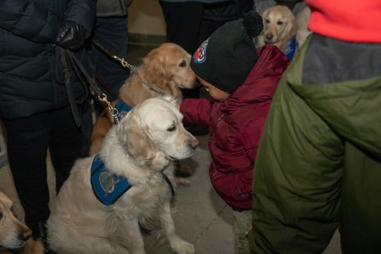 The comfort dogs went to several vigils, schools, and events in the week after the Molson Coors shooting.