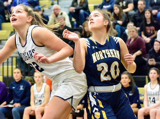 Port Huron Northern's Zoe Klink fights for a rebound against Macomb Dakota in a Division 1 girls basketball district semifinal game on Wednesday, March 4, 2020.